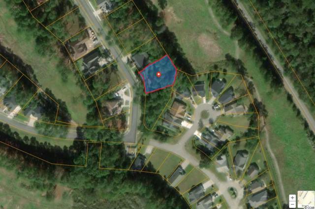 Lot 348 Mcleod Ln., Myrtle Beach, SC 29588 (MLS #1909911) :: Jerry Pinkas Real Estate Experts, Inc