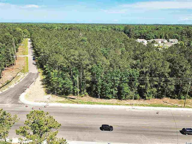 6.77 Acres Highway 707, Murrells Inlet, SC 29576 (MLS #1911124) :: The Lachicotte Company