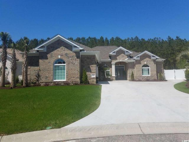 273 Waterfall Circle, Little River, SC 29566 (MLS #1911235) :: Jerry Pinkas Real Estate Experts, Inc