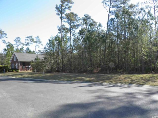 28 Springtime Ct., Murrells Inlet, SC 29576 (MLS #1911751) :: The Litchfield Company