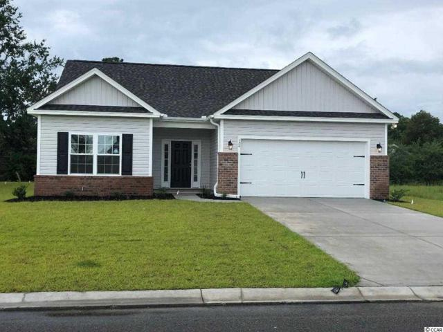 168 Palm Terrace Loop, Conway, SC 29526 (MLS #1913894) :: The Litchfield Company