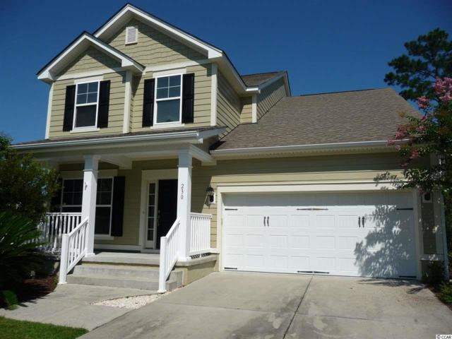 230 Simplicity Dr., Murrells Inlet, SC 29576 (MLS #1915227) :: The Lachicotte Company