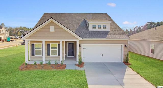 875 Summer Starling Pl., Myrtle Beach, SC 29577 (MLS #1916734) :: The Litchfield Company