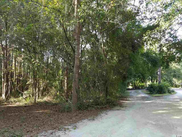 39 Inlet View Ln., Pawleys Island, SC 29585 (MLS #1922357) :: Hawkeye Realty