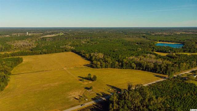 4500 Bottle Branch Rd., Conway, SC 29527 (MLS #1922483) :: The Lachicotte Company