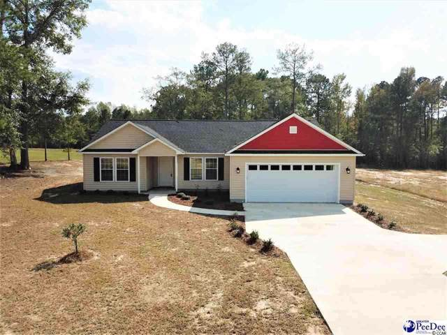 305 Pocosin Rd., Latta, SC 29565 (MLS #2001182) :: The Lachicotte Company