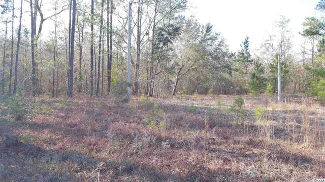 4863 Bottle Branch Rd., Conway, SC 29527 (MLS #2001453) :: The Greg Sisson Team with RE/MAX First Choice