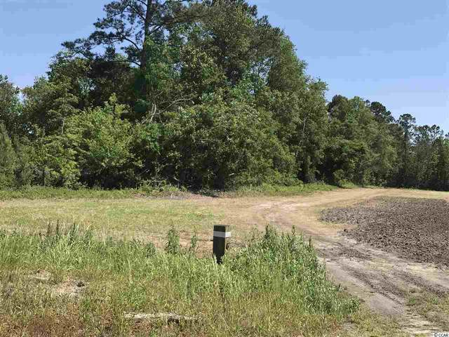 TBD Wise Farm Rd., Aynor, SC 29511 (MLS #2009115) :: The Hoffman Group