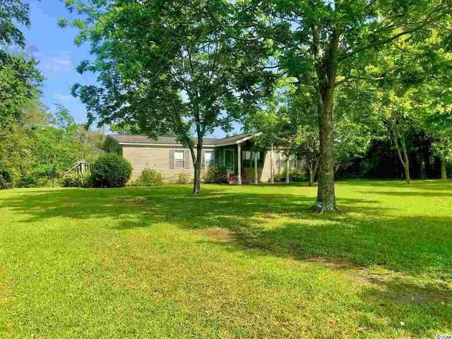 8811 Henrietta Bluff Rd., Conway, SC 29527 (MLS #2009648) :: The Lachicotte Company