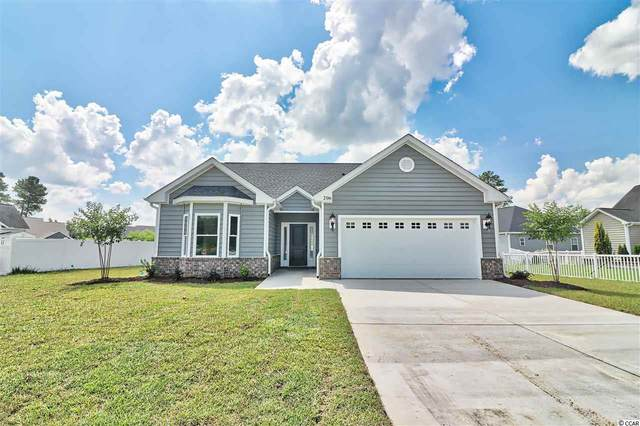 206 Apex Dr., Conway, SC 29526 (MLS #2009700) :: Grand Strand Homes & Land Realty