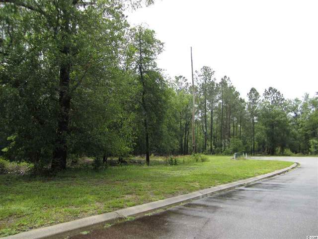 349 Cypress Flat Ct., Conway, SC 29526 (MLS #2012026) :: Grand Strand Homes & Land Realty