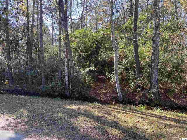 671 NW Boundary Line Dr. Nw, Calabash, NC 28467 (MLS #2013816) :: Leonard, Call at Kingston