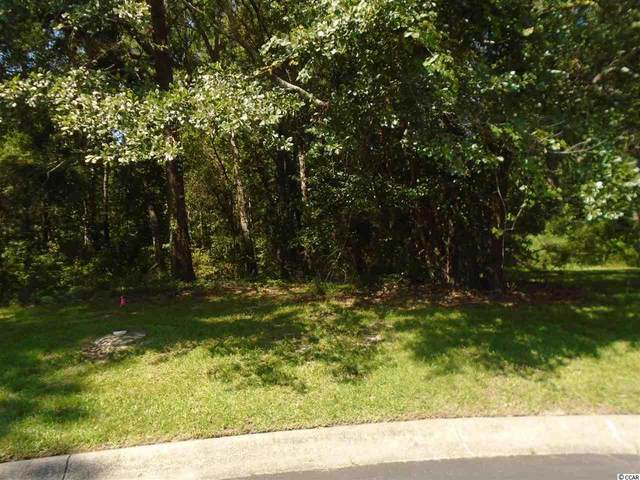50 Monarch Ct., Pawleys Island, SC 29585 (MLS #2014348) :: The Greg Sisson Team with RE/MAX First Choice