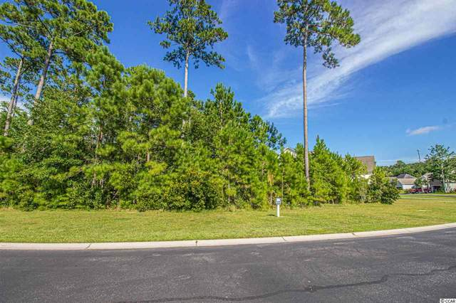 51 Summerlight Dr., Murrells Inlet, SC 29576 (MLS #2016044) :: The Lachicotte Company