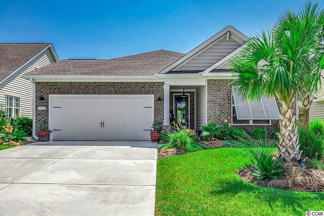 1125 Bronwyn Circle, North Myrtle Beach, SC 29582 (MLS #2016710) :: Jerry Pinkas Real Estate Experts, Inc