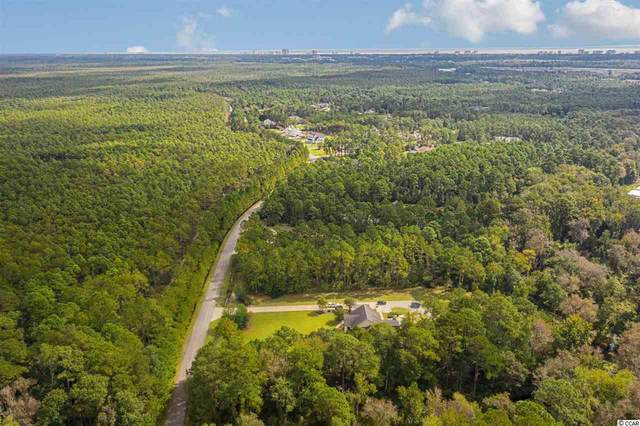 TBD Red Wolf Trail, Myrtle Beach, SC 29579 (MLS #2021791) :: Coastal Tides Realty