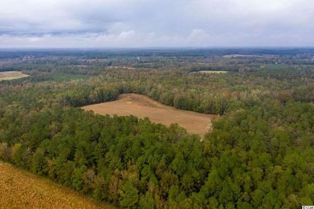 63 Acres Hanna Loop Rd., Hemingway, SC 29554 (MLS #2024370) :: Jerry Pinkas Real Estate Experts, Inc