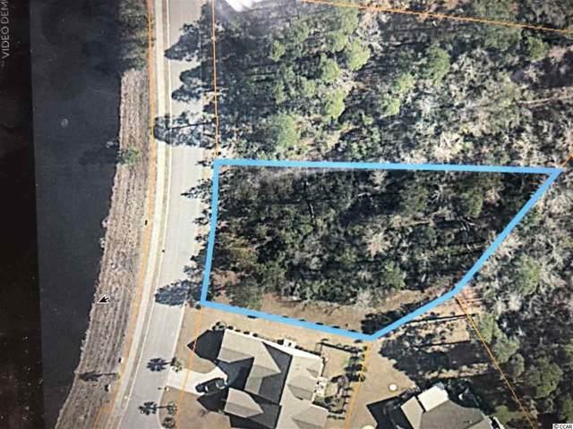 116 Sago Palm Dr., Myrtle Beach, SC 29579 (MLS #2025533) :: The Litchfield Company