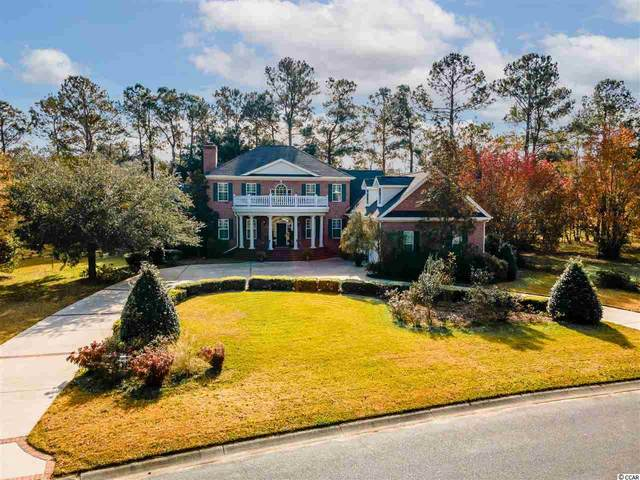 226 Oatland Lake Rd., Pawleys Island, SC 29585 (MLS #2026194) :: James W. Smith Real Estate Co.