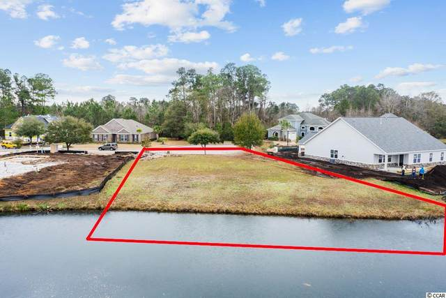 1020 Black Skimmer Dr., Conway, SC 29526 (MLS #2101090) :: Jerry Pinkas Real Estate Experts, Inc