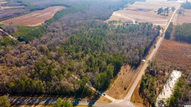 40-acres Highway 76, Nichols, SC 29581 (MLS #2101533) :: Leonard, Call at Kingston