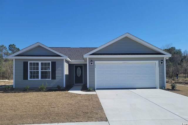 31 Desurrency Ct., Georgetown, SC 29440 (MLS #2103240) :: Armand R Roux | Real Estate Buy The Coast LLC
