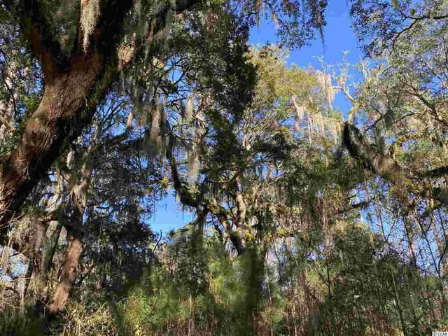 Lot M Tuckers Rd., Pawleys Island, SC 29585 (MLS #2103382) :: The Litchfield Company