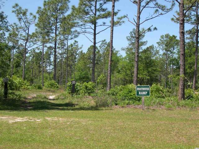 Lot 1066 Duany Dr., Georgetown, SC 29440 (MLS #2109805) :: The Hoffman Group