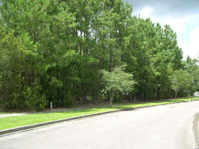 147-157-167 Bridgeview Rd., Georgetown, SC 29440 (MLS #2115576) :: Duncan Group Properties