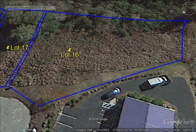 167 Prather Park Dr., Myrtle Beach, SC 29588 (MLS #810068) :: The Trembley Group