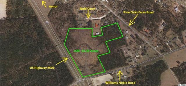 W William Nobles Rd., Aynor, SC 29511 (MLS #1316087) :: The Homes & Valor Team