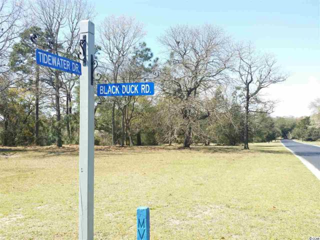 Lot 51 Black Duck Rd., Pawleys Island, SC 29585 (MLS #1507881) :: Team Amanda & Co