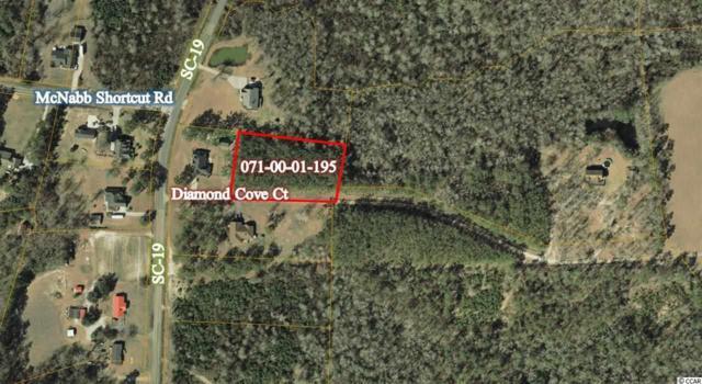 TBD Diamond Cove Ct., Loris, SC 29569 (MLS #1723019) :: The Litchfield Company