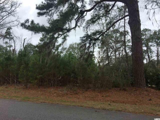 114 Chapel Creek Road, Pawleys Island, SC 29585 (MLS #1802806) :: Myrtle Beach Rental Connections