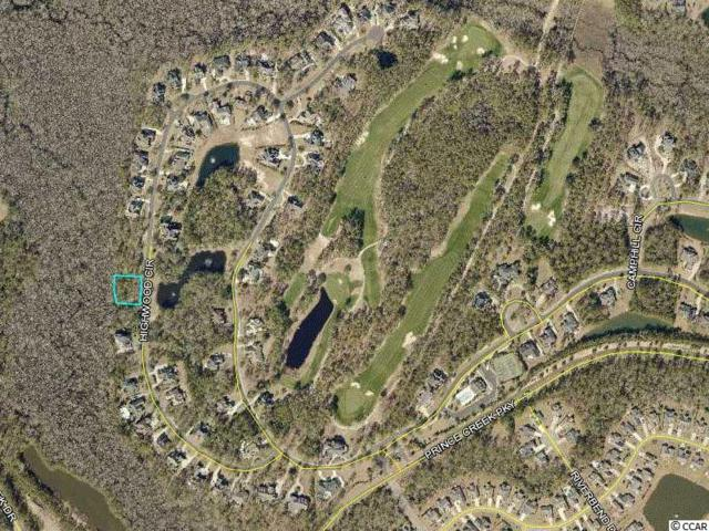 144 Highwood Circle, Murrells Inlet, SC 29576 (MLS #1808821) :: Myrtle Beach Rental Connections