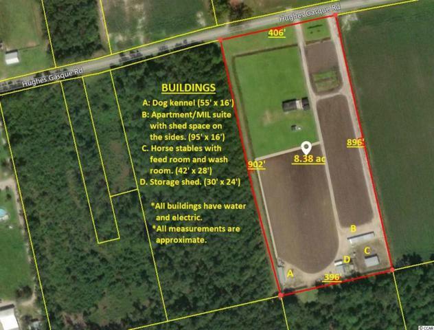 2262 Hughes Gasque Rd., Aynor, SC 29511 (MLS #1823825) :: The Hoffman Group