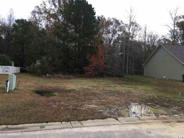 232 Hamilton Way, Conway, SC 29526 (MLS #1824125) :: Right Find Homes