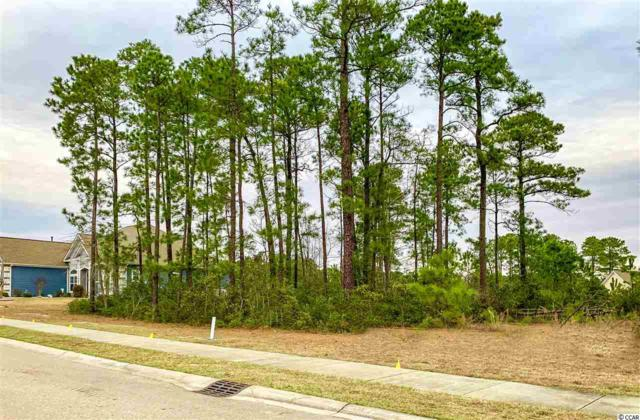 Lot 95 Sago Palm Dr., Myrtle Beach, SC 29579 (MLS #1903990) :: The Litchfield Company