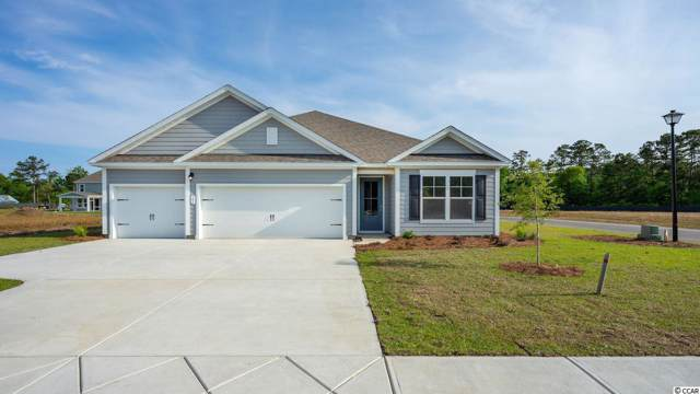 385 Castaway Key Dr., Pawleys Island, SC 29585 (MLS #1904979) :: The Greg Sisson Team with RE/MAX First Choice