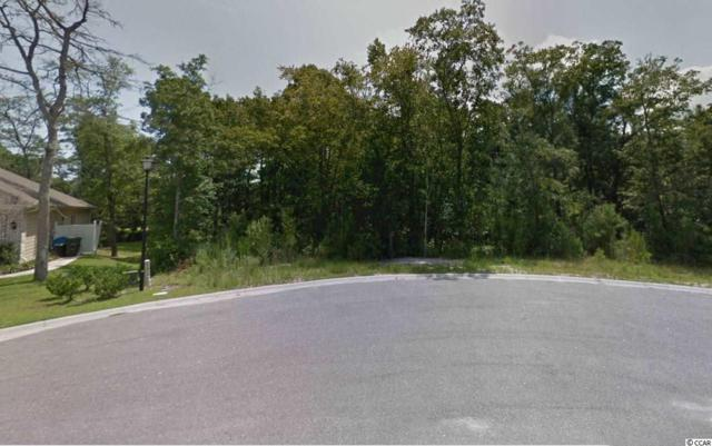 132 Swallowtail Ct., Little River, SC 29566 (MLS #1907143) :: The Hoffman Group