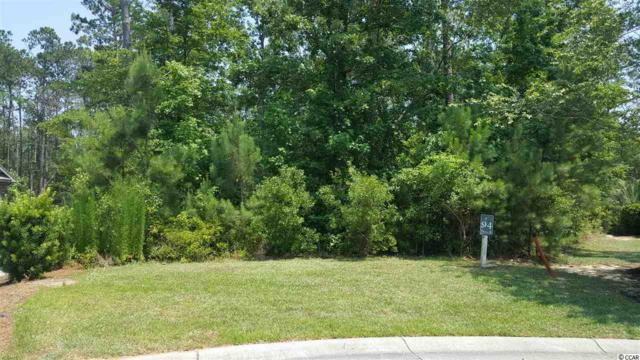 Lot 94 Creek View Ct., Murrells Inlet, SC 29576 (MLS #1911783) :: Hawkeye Realty