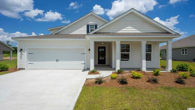 390 Castaway Key Dr., Pawleys Island, SC 29585 (MLS #1921883) :: The Greg Sisson Team with RE/MAX First Choice