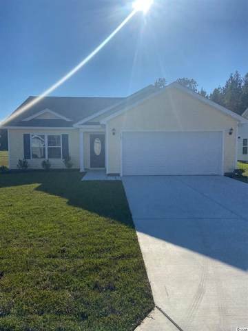 107 Desurrency Ct., Georgetown, SC 29440 (MLS #2022105) :: Welcome Home Realty