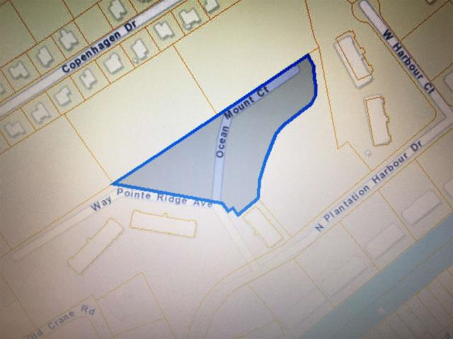 W Ocean Mount Court, Little River, SC 29566 (MLS #1725920) :: James W. Smith Real Estate Co.