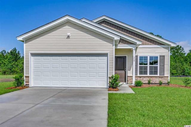 359 Angler Ct., Conway, SC 29526 (MLS #1902031) :: The Hoffman Group
