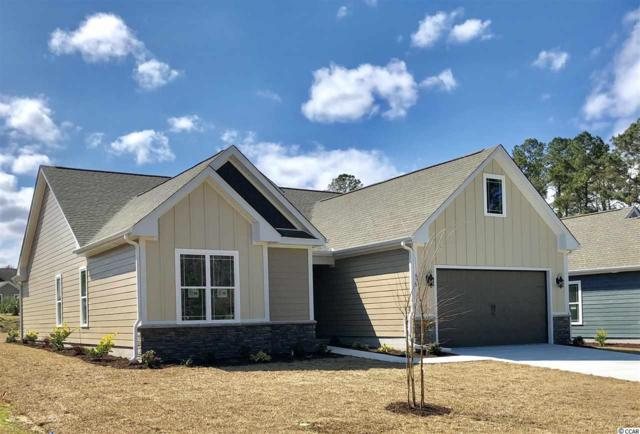 175 Rivers Edge Dr., Conway, SC 29526 (MLS #1902066) :: The Hoffman Group