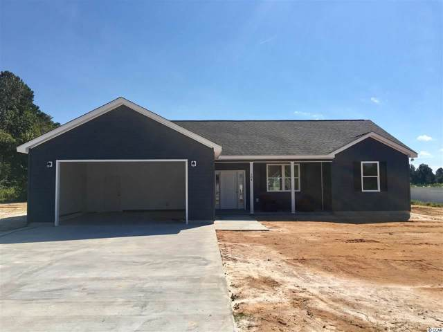104 Brian Oaks Trail, Conway, SC 29527 (MLS #1909649) :: Jerry Pinkas Real Estate Experts, Inc
