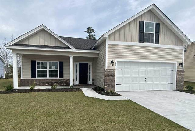 280 Palm Terrace Loop, Conway, SC 29526 (MLS #2016273) :: Surfside Realty Company