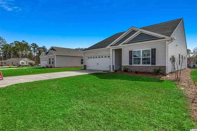 404 Stevia Ct., Conway, SC 29526 (MLS #2022529) :: Duncan Group Properties