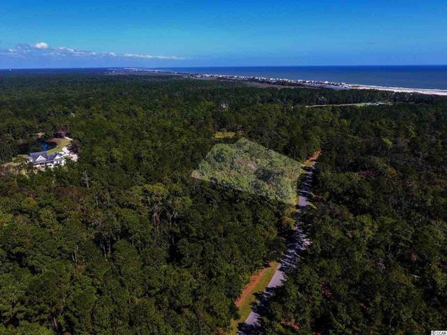 2587 Vanderbilt Blvd., Pawleys Island, SC 29585 (MLS #1819901) :: The Hoffman Group